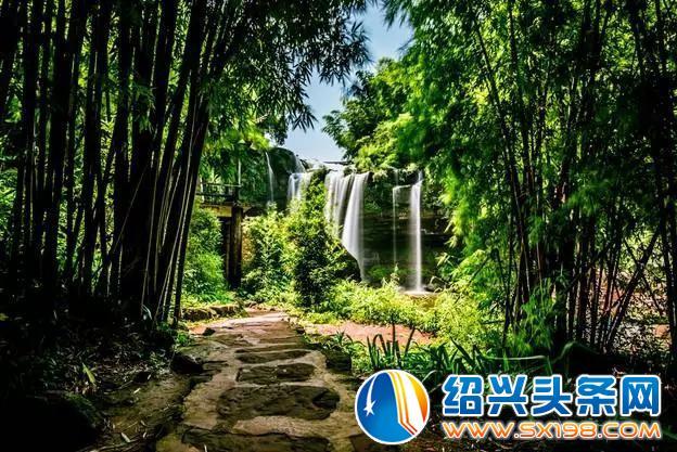 宁波竹海风景区